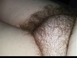 wifes fury soft hairy pussy just out of the shower