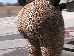 Leopard Bubble